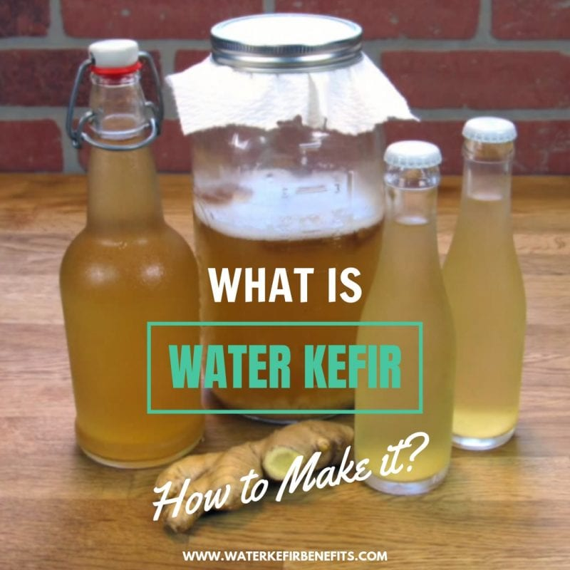 What is Water Kefir & How to Make it
