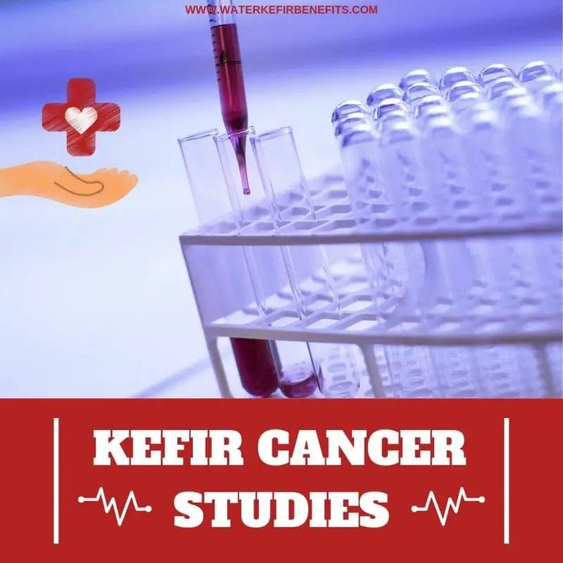 Kefir Cancer Study – Anticancer Properties of Kefir