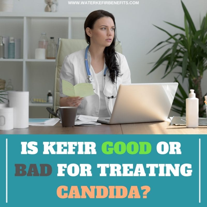 Probiotics for Candida Is Kefir Good or Bad for Candida