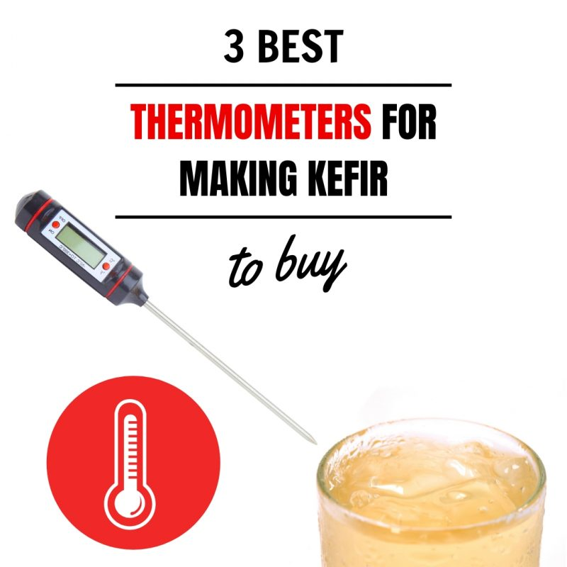 3 Best Thermometers for Making Kefir to Buy