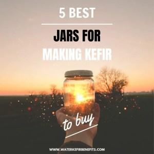 5 Best Jars for Making Kefir to Buy