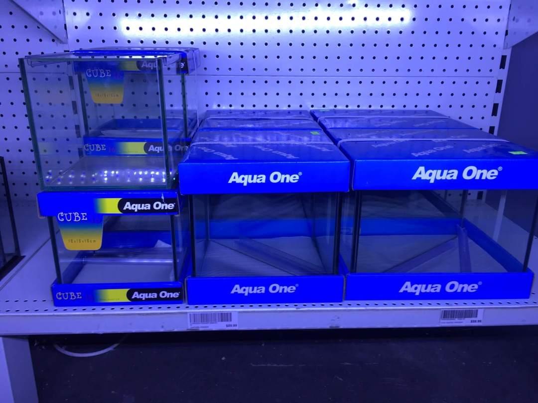 Betta Fish Tank Melbourne   Aqua One Tanks