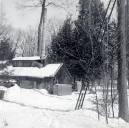 Joe Snyder's maple sugar bush and cabin, located in Bloomingdale, Ontario, in winter, circa 1965; Source: Kitchener Public Library Archives