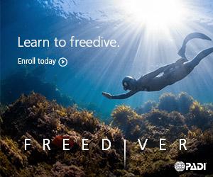 PADI Freediver Courses Melbourne
