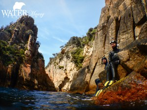 Freediving excursion Tasmania