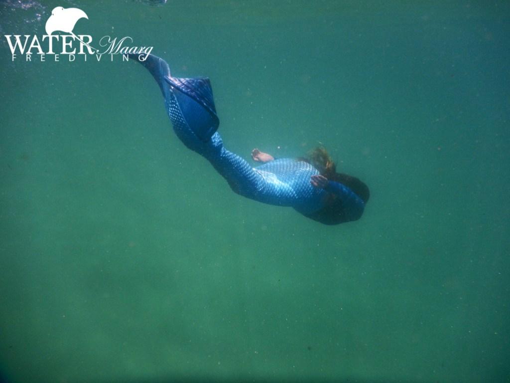 Mermaid Jacinta in Port Phillip Bay