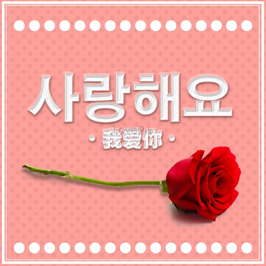 520 valentine cho cô một bông hoa hồng cho tôi yêu em