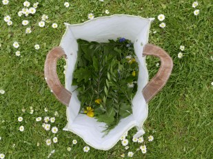 The 'foraging bag'