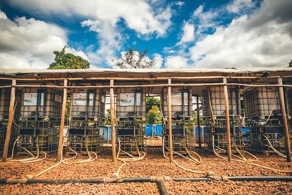 Safe water systems in Nyarugusu Refugee Settlement
