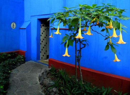 Door Casa Azul