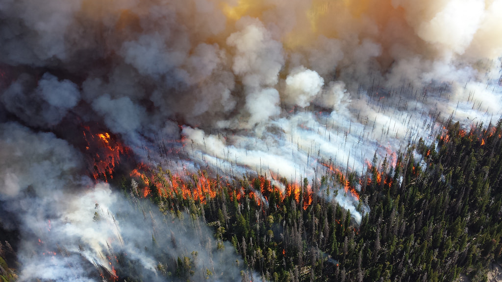 Extreme Wildfires and Smart Watershed Management