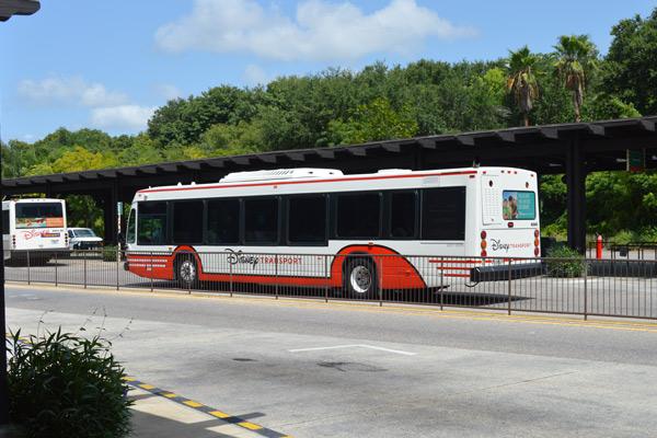 View of Disney Bus Tranporation from Disney World in Orlando Fl 600