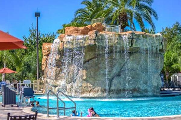 Hotels Near Discovery Cove Orlando Fl