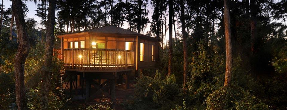 Disney Saratoga Springs Resort Treetop Villa lit up at night on the water 960