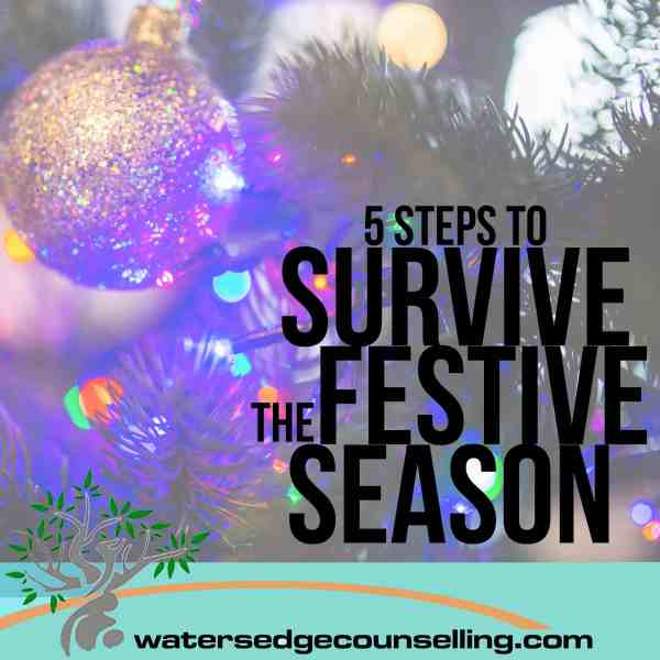 5 Steps to Survive the Holiday Season