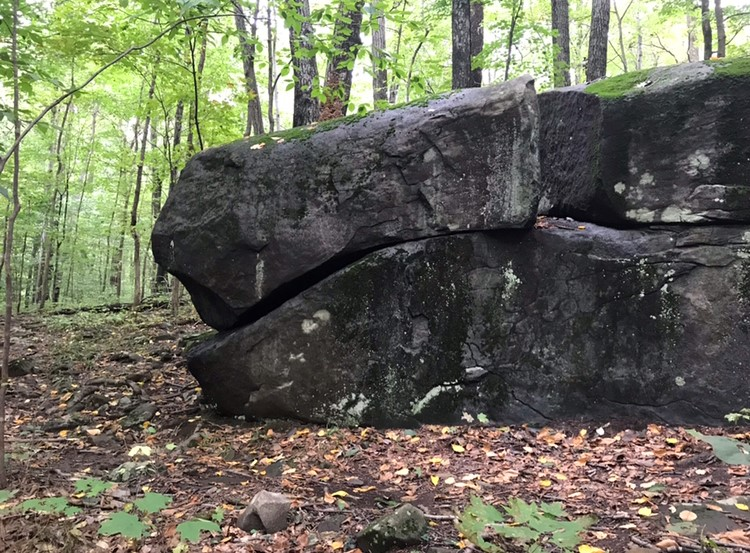 March 27th, 2021, 10am, Manderfield Preserve Ceremonial Stone Landscapes Guided Walk