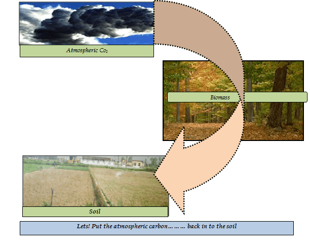 Lets! Put the atmospheric carbon……… back in to the soil