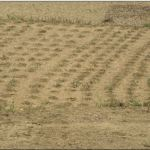 Adopting good Agriculture practices can prevent erosion in watershed