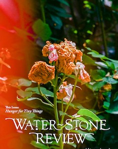 Water~Stone Review v 23 cover