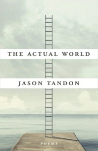 This is a cover image of writer Jason Tandon's book titled The Actual World. It features an image of a long and narrow ladder standing upright on a slab of cement against a cloudy sky.