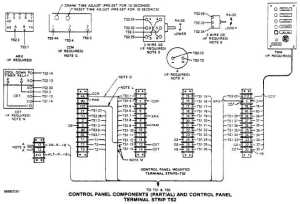 Baldor Dc Motor Wiring Diagram  impremedia
