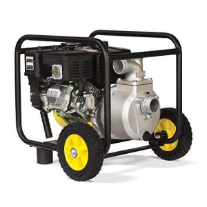 12 of The Best Commercial Water Transfer Pumps