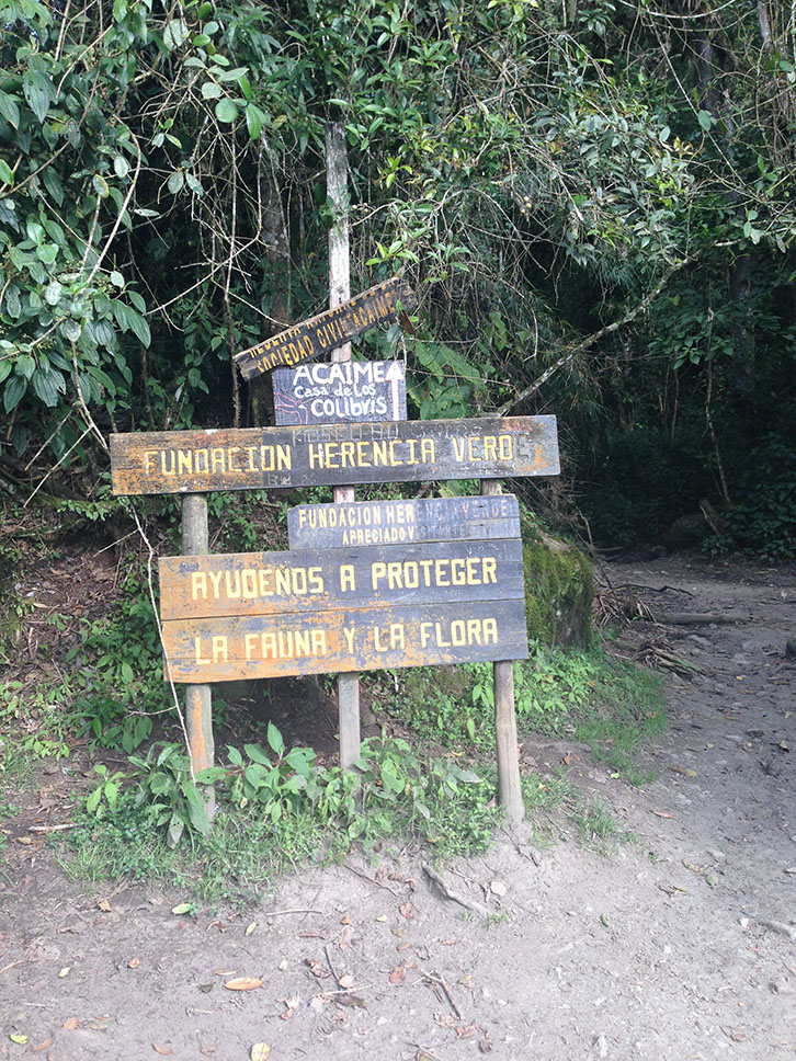 Cocora Valley Acaime Hike signs