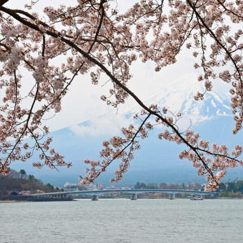fuji-five-lakes-pass2