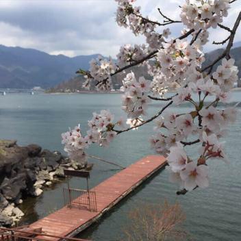 fuji-five-lakes-pass6