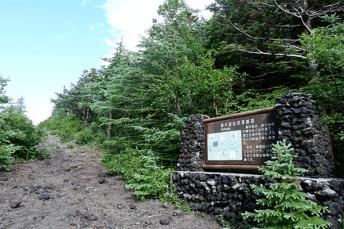 summer-near-mt-fuji10