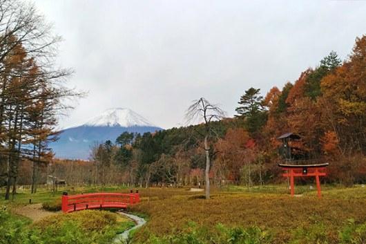 วิวภูเขาไฟฟูจิจากหมู่บ้านนินจา Oshino Ninja Village