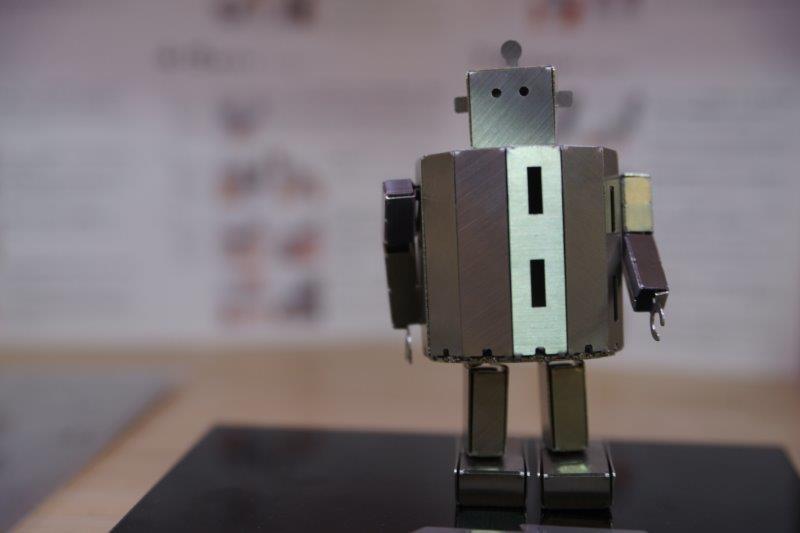12.SumidaMachidokoroRobot