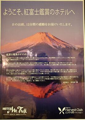 The hotel boasts a view of Mt Fuji