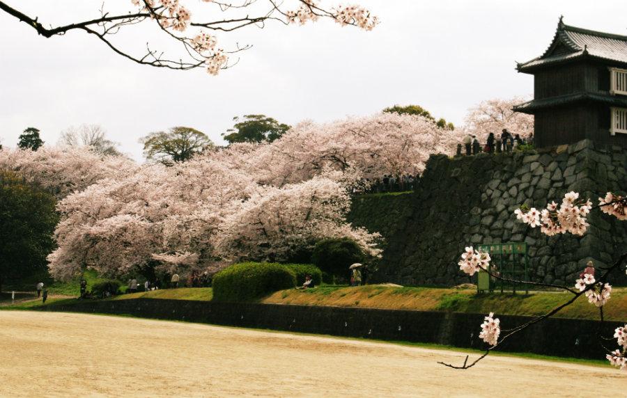 3 fukuoka-castle-1