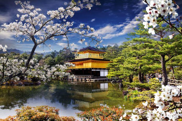 Kinkakuji Temple in Spring Season