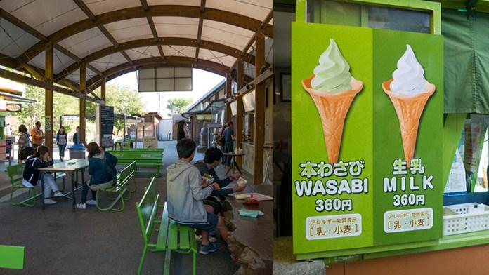 wasabi food