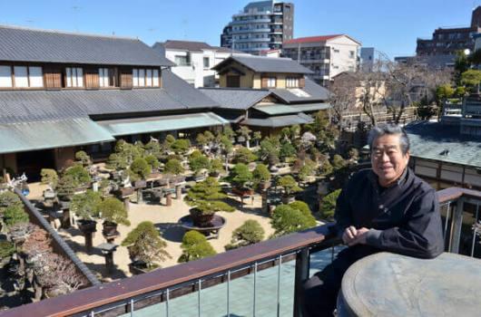 Kunio Kobayashi world-famous Bonsai master 2