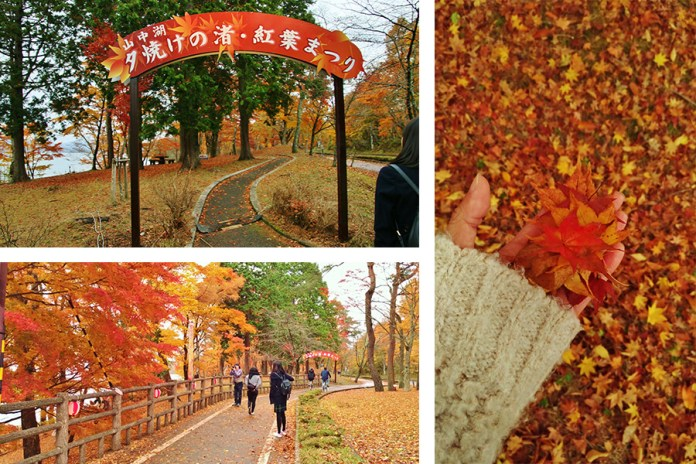 "The ""Yuyake no Nagisa, Fall Foilage Festival"" at Yamanakako is romantic and charming"
