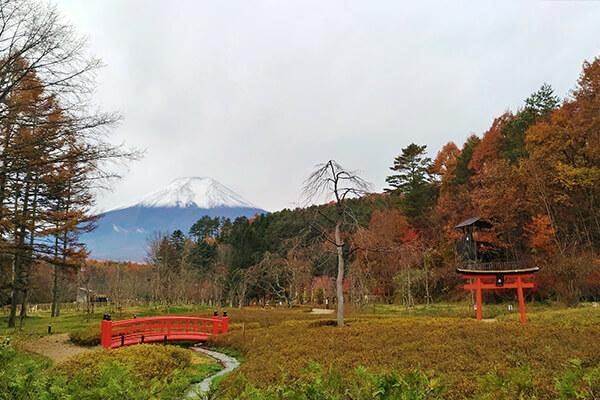 A view of Mt. Fuji from Oshino Ninja Village