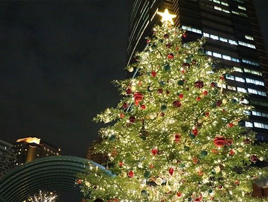 yebisu-christmas-tree