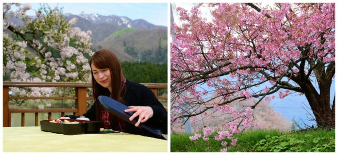 sakihana onsen and sakura