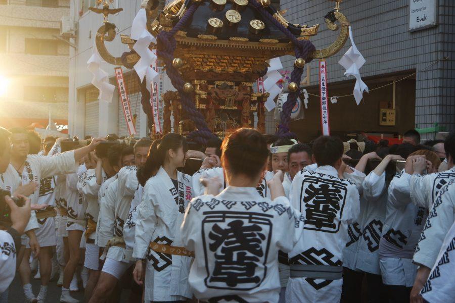 mikoshi carrying at Sanja Matsuri