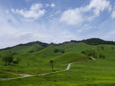 Tonomine Kogen Highlands