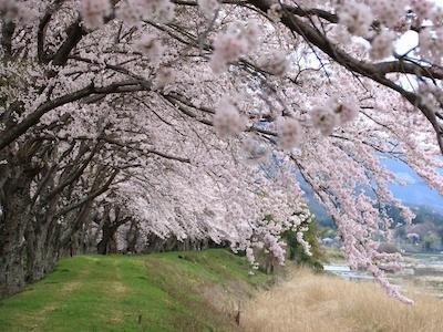 Ochigawa River
