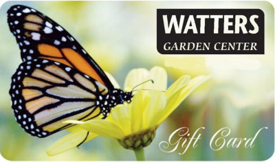 Watters-gift-card1-new