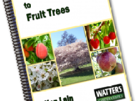 The Complete Guide to Fruit Trees