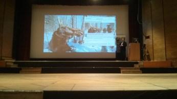 Doom ahead, slide 5, citing the now debunked Moose will die story.