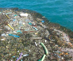 Claim Climate Friendly Plastic Recycling Is A Total Con
