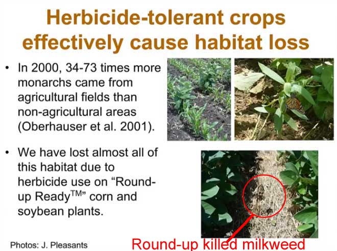 herbicides_habitat_loss