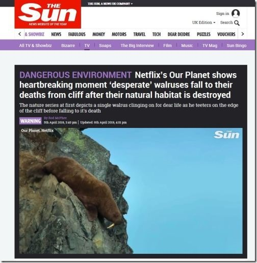 Attenborough's tragedy porn of walruses plunging to their